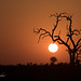 Sunset at Kruger National Park