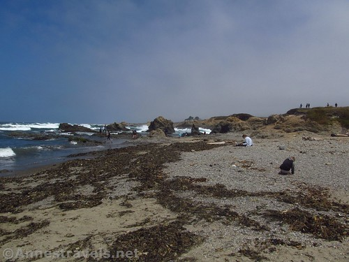 On the main beach. It doesn't look like there is much in the way of sea glass until you get to the far end. Glass Beach, California