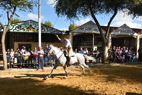 Carrera de cintas a caballo de la Hermandad del Rocío