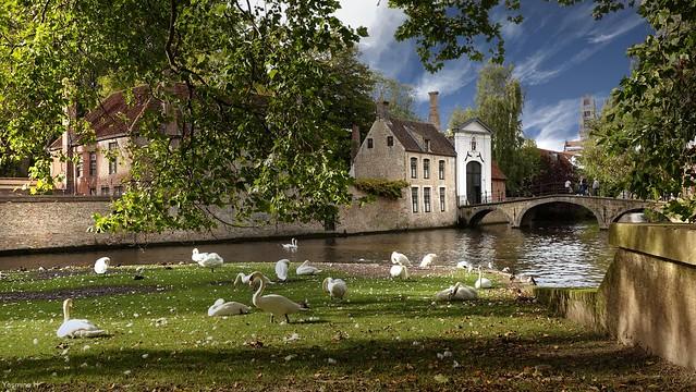 Bruges - 4056