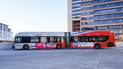 WMATA Metrobus 2015 New Flyer Xcelsior XDE60 #5463