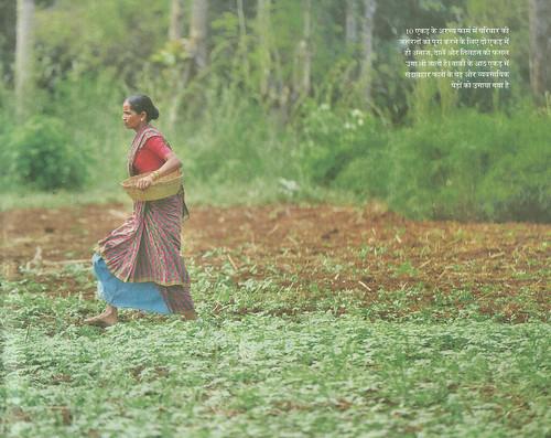10 एकड़ के अरण्य फार्म में परिवार की जरूरतों को पूरा करने के लिये दो एकड़ में ही अनाज, दालें और तिलहन की फसल उगा ली जाती है। बाकी के आठ एकड़ में सदाबहार फलों के पेड़ और व्यवसायिक पेड़ों को उगाया गया है
