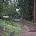 Pemberton Mountain Bike Trail