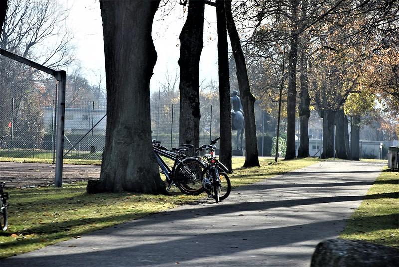 Road to Langendorf 22.11 (1)