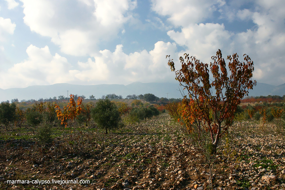 Izmir-november-2009-421c