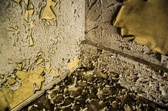 The story of The Yellow Wallpaper