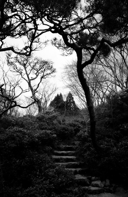 Wandering, not lost