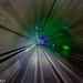 DSC_3948 by Asim Sarker