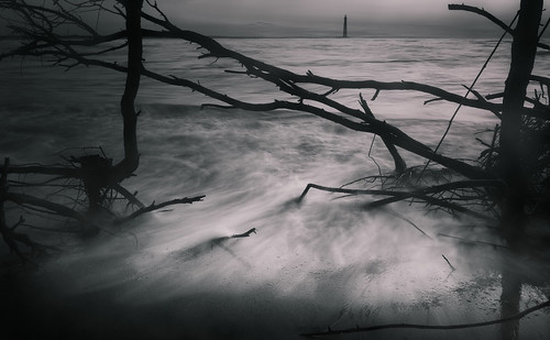 canon charleston follybeach southcarolina atmosphere blackandwhite driftwood fog forlorn landscape light lighthouse mist monochrome nature seascape shore tones water waves mood