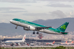 Aer Lingus EI-DVE 320-200 (IMG_5597)