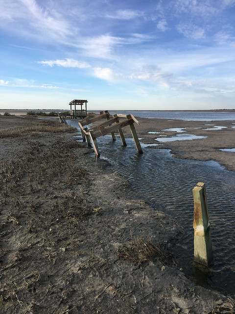 Boardwalk pilings