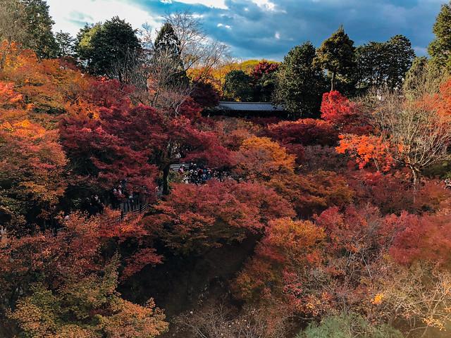 Kyoto2_17