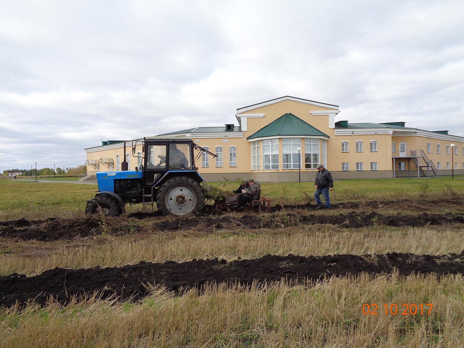 Второй этап посадки деревьев для защиты зданий музея от суховейных ветров и снежных бурь. Октябрь 2017 года