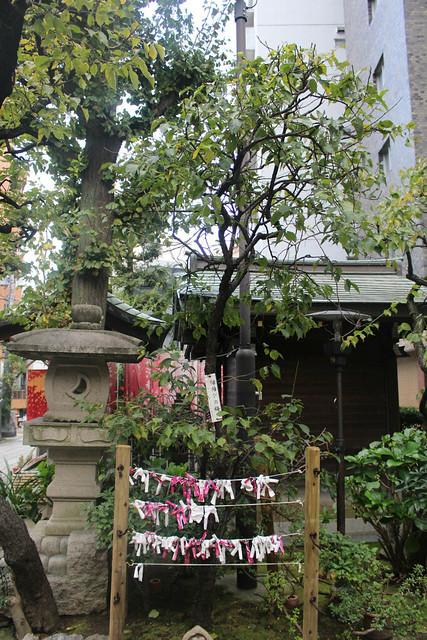 hirakawatenmangu_0039