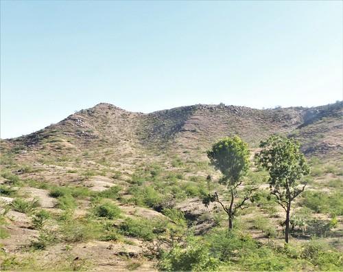 i-Mount Abu-udaipur (20)