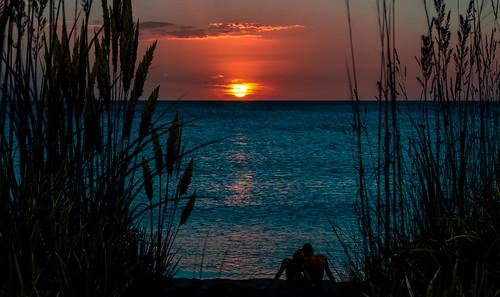 sunset dunes grass colors lateafternoon sun walking walkingaround waterways seashore seascape beachscape blue beach beautifulpeople outdoors gasparillaisland miamifl miamibeaches island