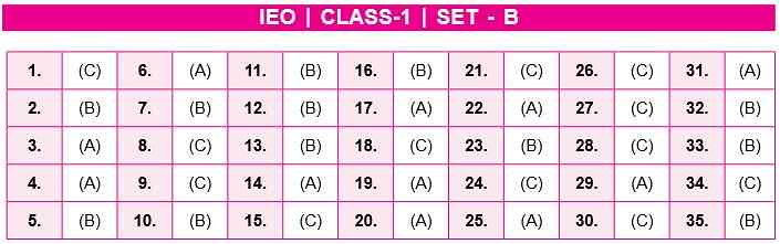 IEO Answer Key Class 1