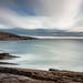 Bay Bulls shore view by Paul F Nicol