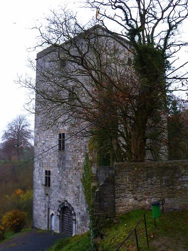 La tour Salamandre à Beaumont