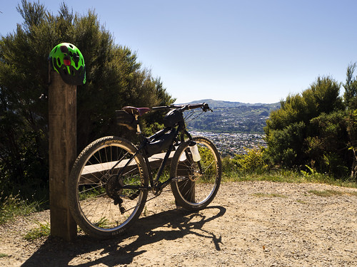 <p>Te Whiti Riser is a track that connects Waiwhetu to the firebreaks that join Wainuiomata Trail Project. Or in my case this time, back towards Upper Hutt.<br /> <br /> Super clear day today, only just had enough water.</p>