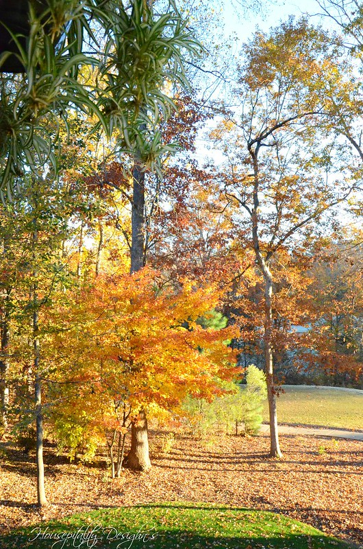 Fall View-Housepitality Designs