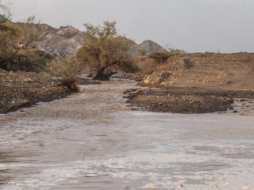 Flooding wadi