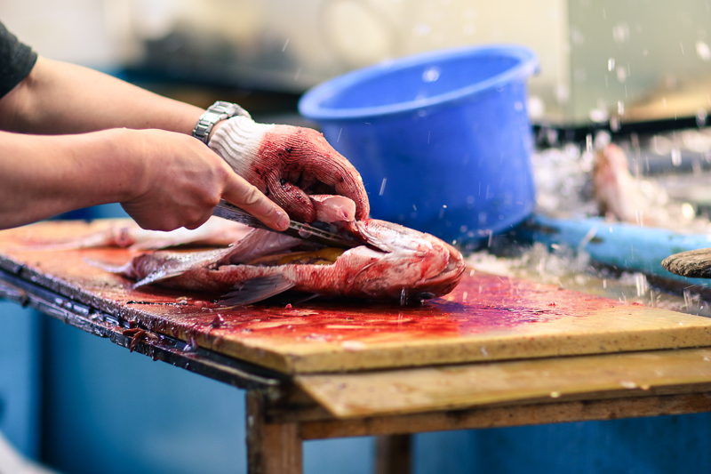 Gutting fish