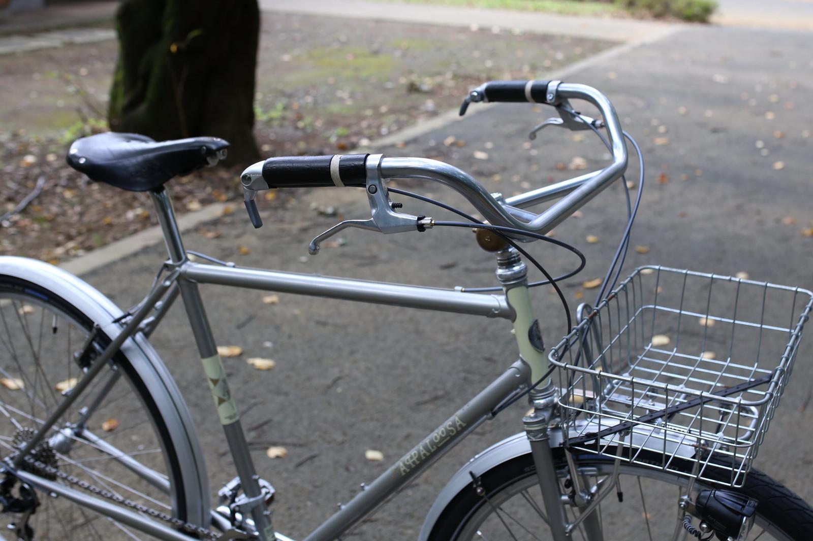 *RIVENDELL* joe appaloosa complete bike