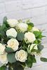 dreamflowerscom-everyday-flowers (985 of 16)