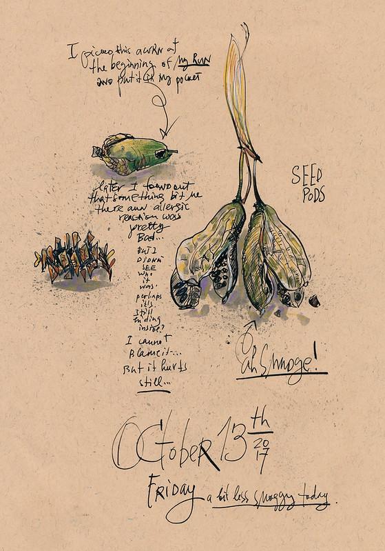 Sketchbook #109: Treasures