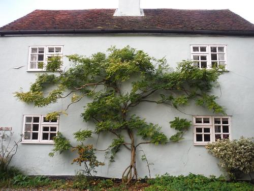 House near Morley Hall