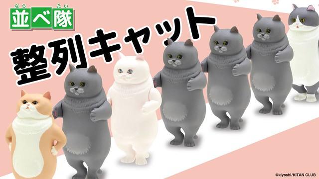 「新增官圖!」趕快來排隊喔~「立正!向前看齊!」奇譚俱樂部【整隊!排隊的貓咪】並べ隊 整列キャット 肥嘟嘟的貓咪買越多越療癒~