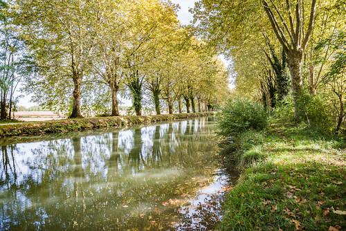 23-Canal Latéral à la Garonne