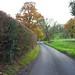 Rural B Road Kent
