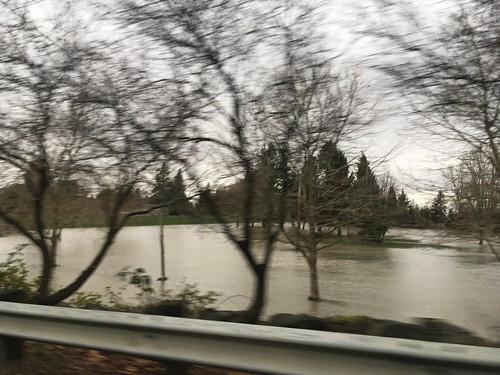 Flooded Skagit River