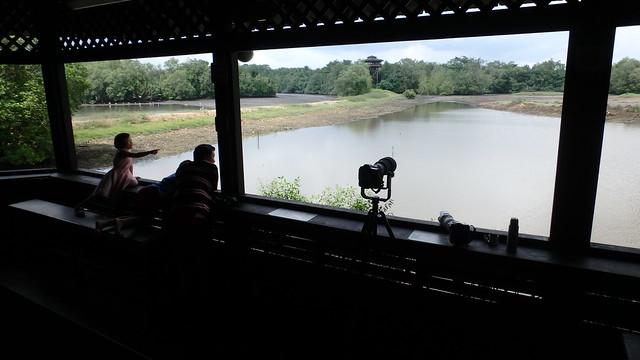 Sungei Buloh Wetland Reserve: Main Hide