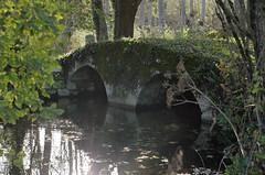 Béthines (Vienne) - Photo of Saint-Aigny