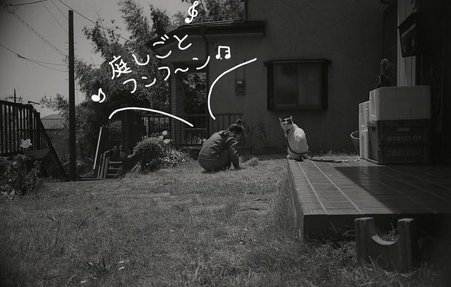 庭しごと、フンフ〜ン♪