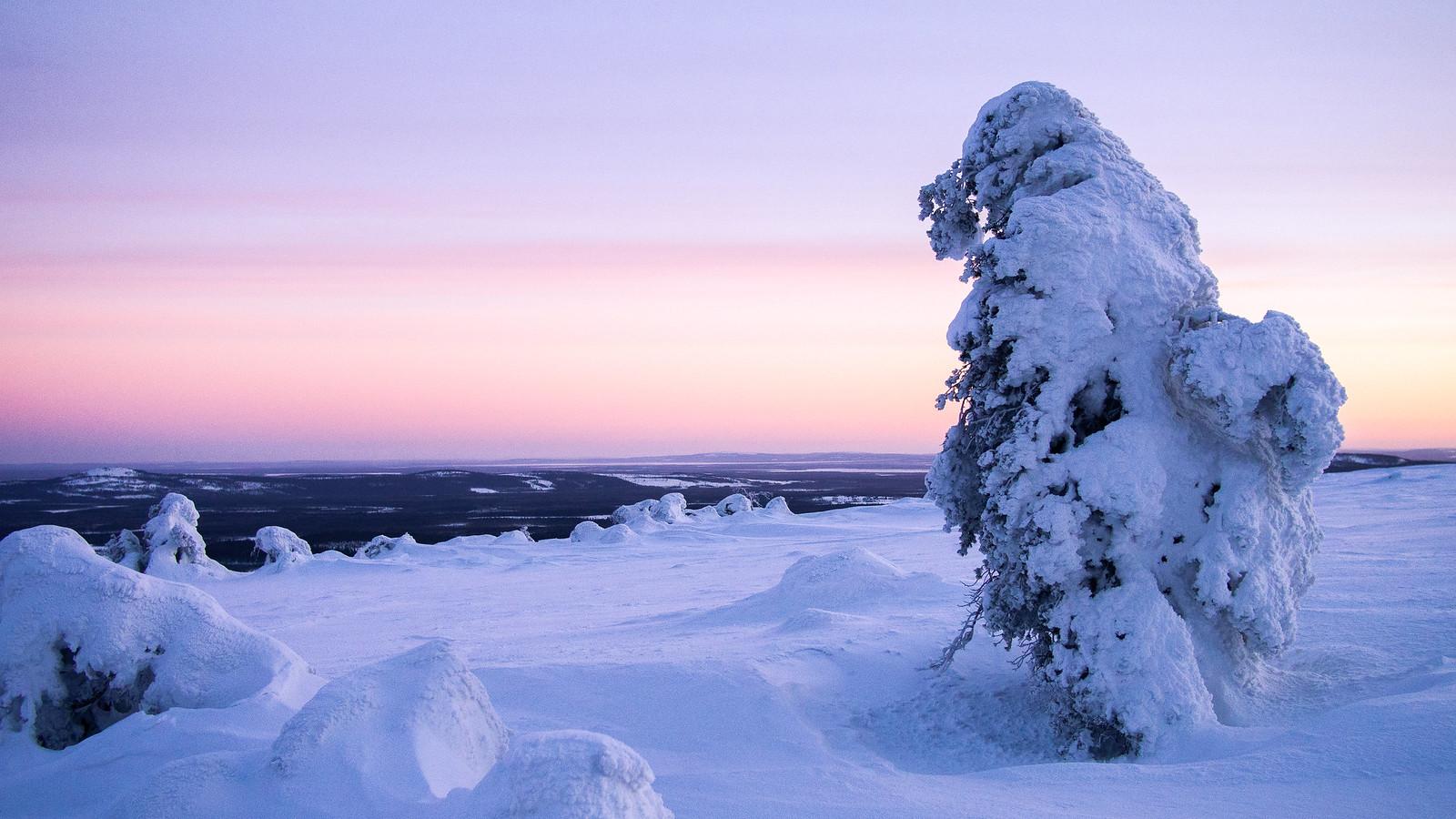 Pakkanen, hanki ja sukset ovat talven ykkösasioita