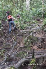 Hiking up to Gunung Tujuh caldera lake