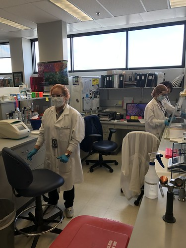 3 people working at various lab stations