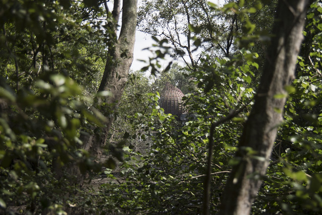 Sungei Buloh Wetland Reserve: Kingfisher Pod