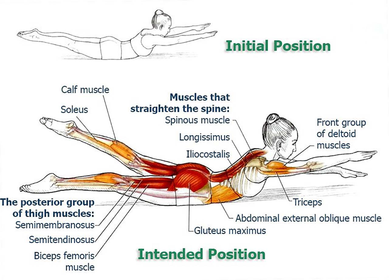 8 Exercises To Improve Your Posture And Relieve Your Back & Spine – Swimming: Swimming is, just like double impact, another version of back extension but it is much harder. Lie on your stomach and extend your legs & arms. Raise your arms and legs up off the mat including your head & chest. At this point, start fluttering your arms and legs up and down until you can't do it anymore. This is one of pro yoga poses so you don't want to start with this one.