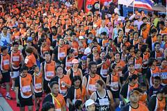RYmarathon2017_Higlight-96