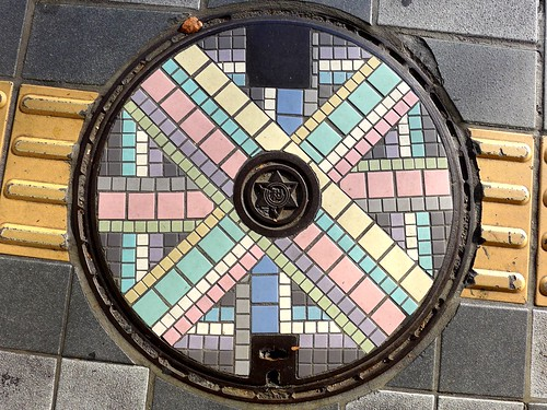 Wakayama city Wakayama pref, manhole cover 4 (和歌山県和歌山市のマンホール4)