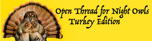 Niteowl Turkey xgiving Banner text