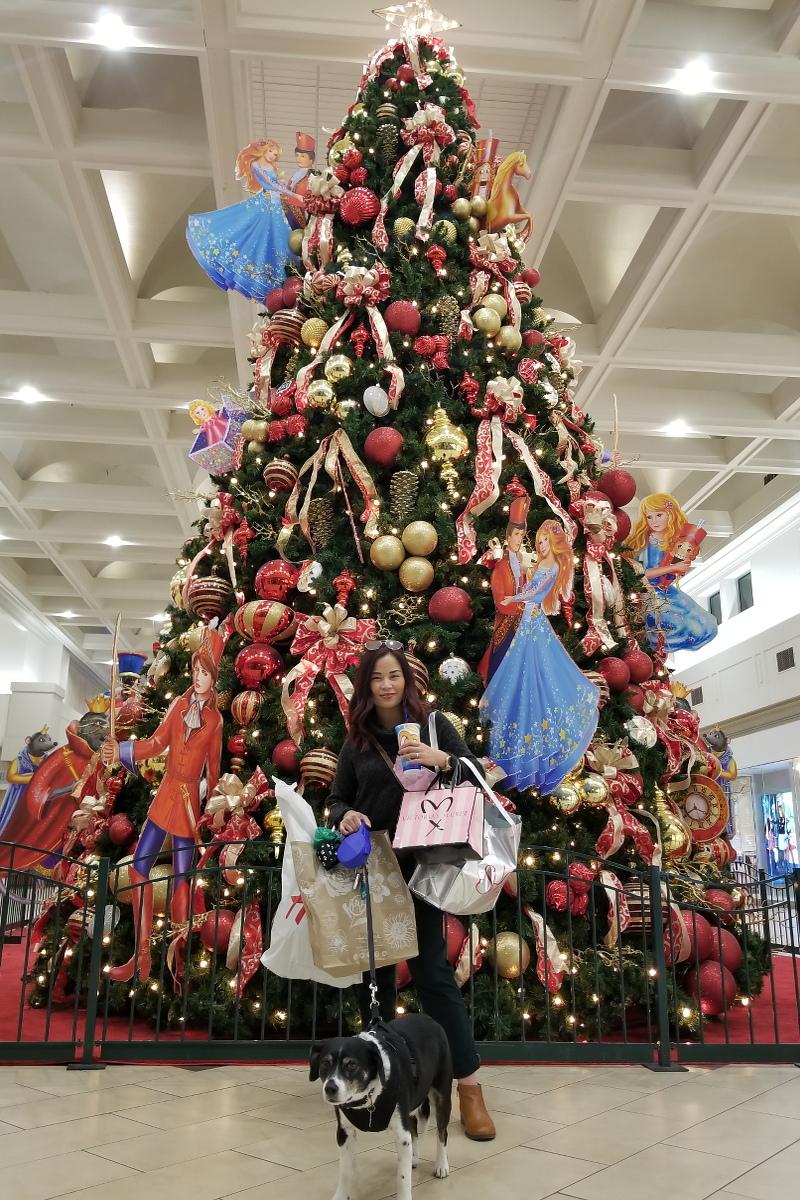 christmas-tree-mall-louis-dog