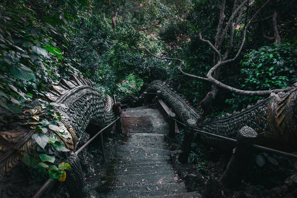 Chiang Rai | Monkey Cave