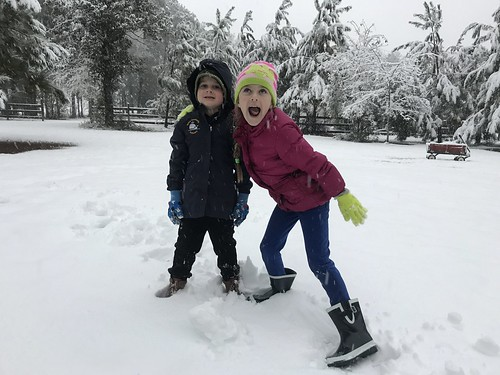 Snow Day December 8, 2017