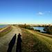 Walthamstow Wetlands Pano 002